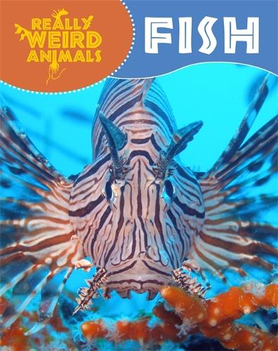 Really Weird Animals: Fish - Really Weird Animals (Paperback)