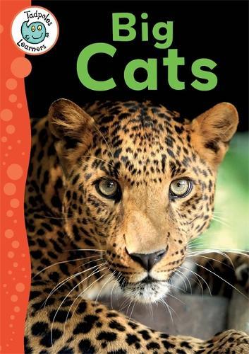Tadpoles Learners: Big Cats - Tadpoles Learners (Paperback)