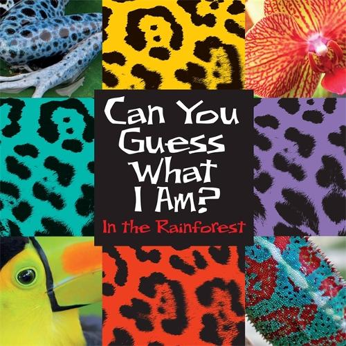 Can You Guess What I Am?: In the Rainforest - Can You Guess What I Am? (Hardback)