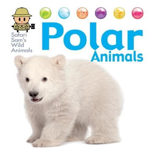 Safari Sam's Wild Animals: Polar Animals - Safari Sam's Wild Animals (Hardback)