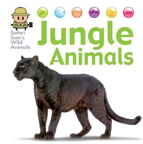 Safari Sam's Wild Animals: Jungle Animals - Safari Sam's Wild Animals (Hardback)