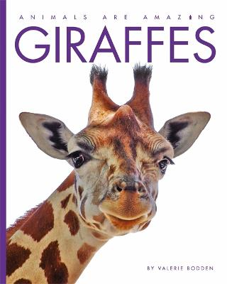 Animals Are Amazing: Giraffes - Animals Are Amazing (Hardback)