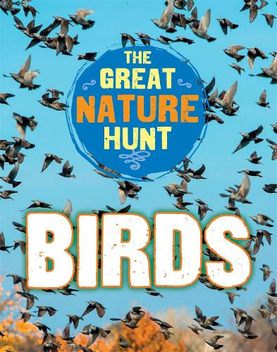 The Great Nature Hunt: Birds - The Great Nature Hunt (Hardback)