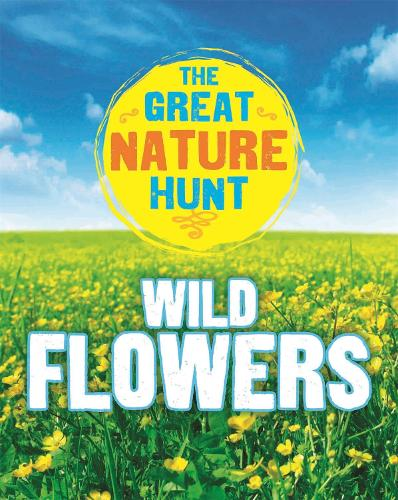 The Great Nature Hunt: Wild Flowers - The Great Nature Hunt (Paperback)