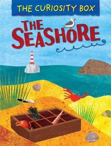 The Curiosity Box: The Seashore - The Curiosity Box (Hardback)