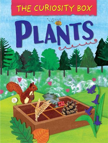 The Curiosity Box: Plants - The Curiosity Box (Hardback)