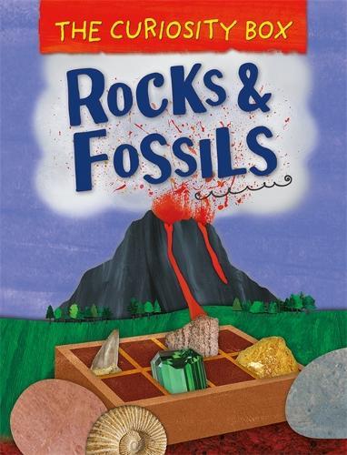 The Curiosity Box: Rocks and Fossils - The Curiosity Box (Hardback)