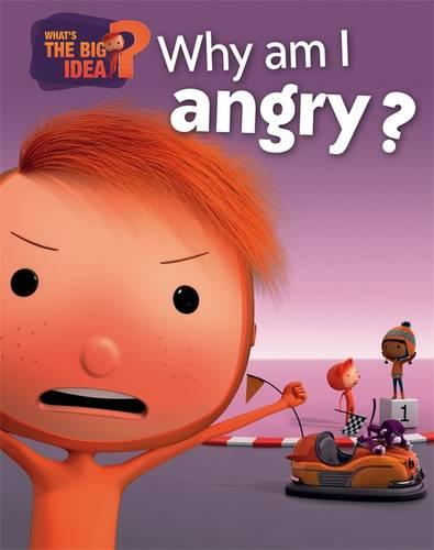 What's the Big Idea?: Why Am I Angry? - What's the Big Idea? (Paperback)