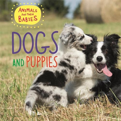 Animals and their Babies: Dogs & puppies - Animals and their Babies (Hardback)