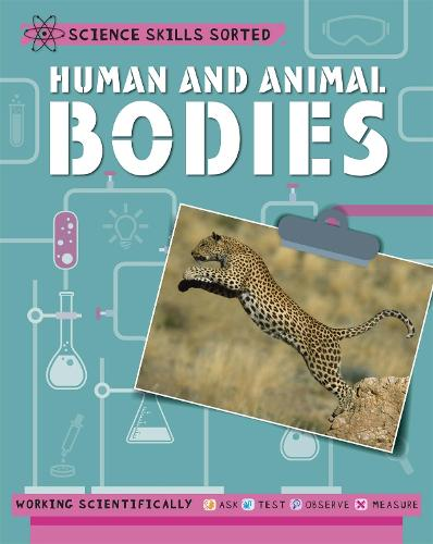 Science Skills Sorted!: Human and Animal Bodies - Science Skills Sorted! (Paperback)