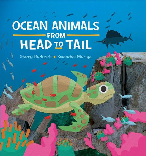 Ocean Animals from Head to Tail (Paperback)