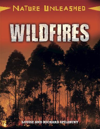 Nature Unleashed: Wildfires - Nature Unleashed (Hardback)