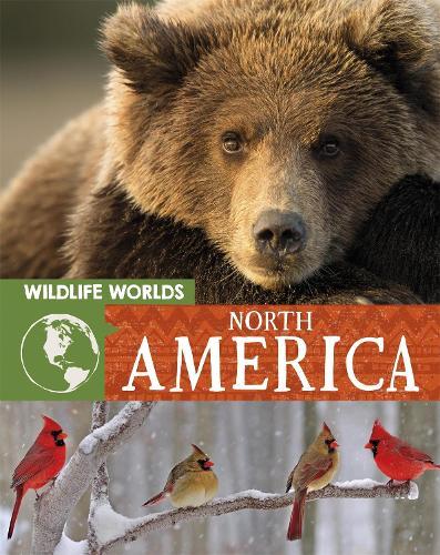 Wildlife Worlds: North America - Wildlife Worlds (Paperback)