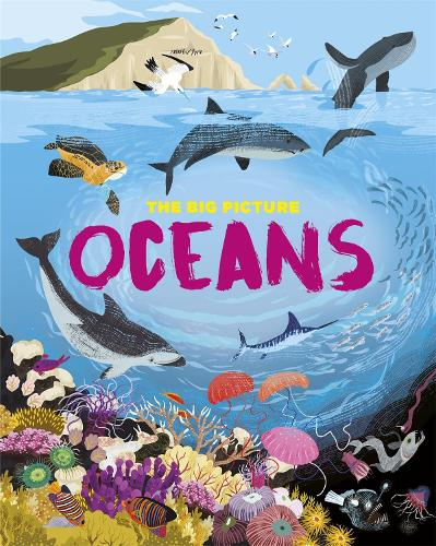 The Big Picture: Oceans - The Big Picture (Hardback)