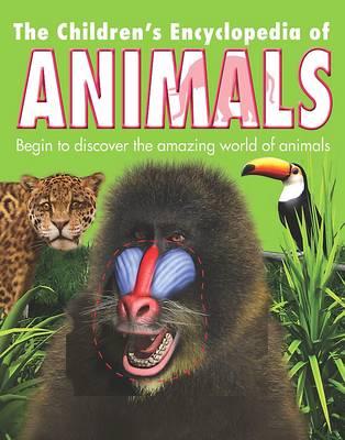 Reference 5+: Children's Animal Encyclopedia (Hardback)