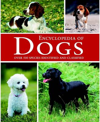 Dogs (Hardback)