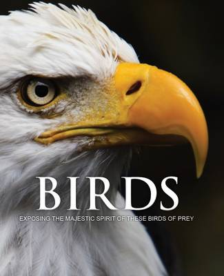 Spirit of Birds of Prey (Hardback)
