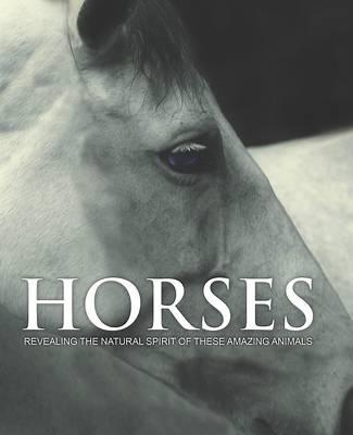 Spirit of Horses (Hardback)