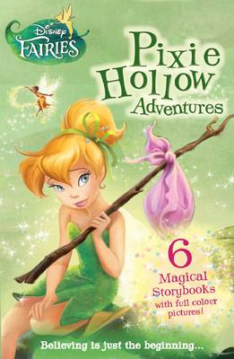 Disney Fairies Chapter Book Slipcase - Pixie Hollow Adventures (Paperback)