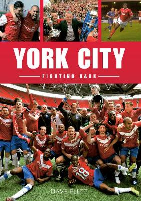 York City Fighting Back (Paperback)