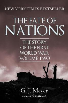 The Fate of Nations: The Story of the First World War, Volume Two (Paperback)