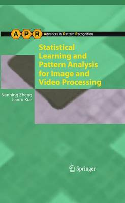 Statistical Learning and Pattern Analysis for Image and Video Processing - Advances in Computer Vision and Pattern Recognition (Paperback)