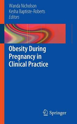 Obesity During Pregnancy in Clinical Practice (Paperback)