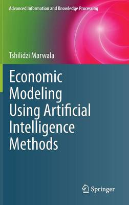 Economic Modeling Using Artificial Intelligence Methods - Advanced Information and Knowledge Processing (Hardback)