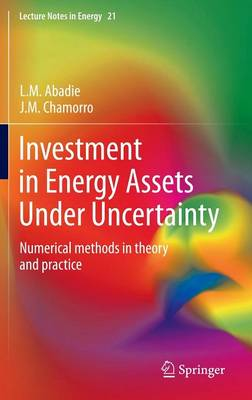 Investment in Energy Assets Under Uncertainty: Numerical methods in theory and practice - Lecture Notes in Energy 21 (Hardback)