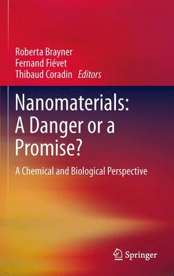 Nanomaterials: A Danger or a Promise?: A Chemical and Biological Perspective (Paperback)