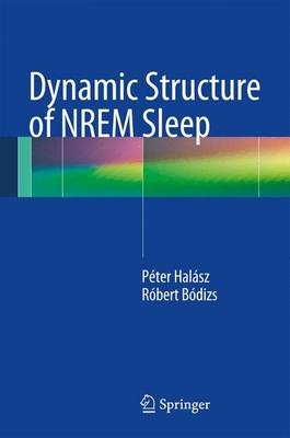 Dynamic Structure of NREM Sleep (Paperback)