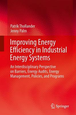 Improving Energy Efficiency in Industrial Energy Systems: An Interdisciplinary Perspective on Barriers, Energy Audits, Energy Management, Policies, and Programs (Paperback)