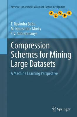 Compression Schemes for Mining Large Datasets: A Machine Learning Perspective - Advances in Computer Vision and Pattern Recognition (Paperback)