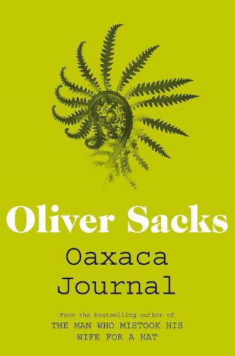 Oaxaca Journal (Paperback)
