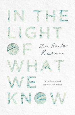 In the Light of What We Know (Hardback)