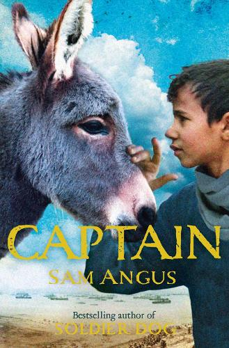 Captain (Paperback)