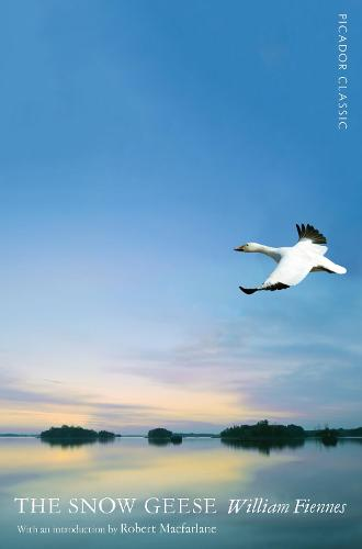 The Snow Geese - Picador Classic (Paperback)