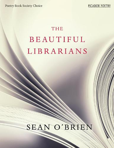 The Beautiful Librarians (Paperback)