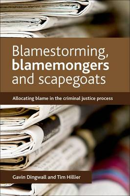Blamestorming, blamemongers and scapegoats: Allocating blame in the criminal justice process (Hardback)