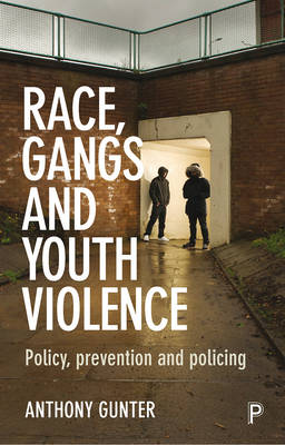 Race, gangs and youth violence: Policy, prevention and policing (Paperback)