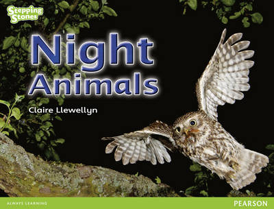 Stepping Stones: Night Animals - Green Level (Paperback)