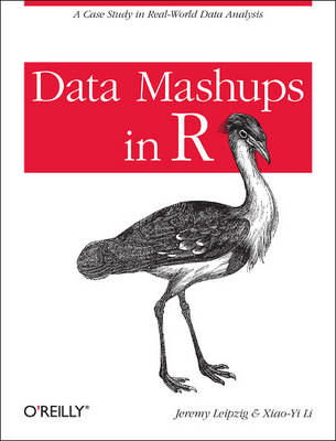 Data Mashups in R: A Case Study in Real-World Data Analysis (Paperback)