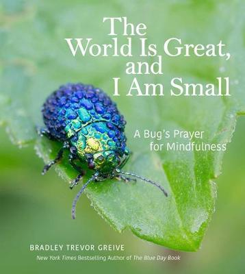 The World Is Great, and I Am Small: A Bug's Prayer for Mindfulness (Hardback)