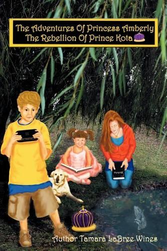 The Adventures of Princess Amberly: The Rebellion of Prince Kota (Paperback)