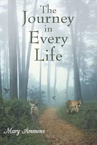 The Journey In Every Life (Paperback)