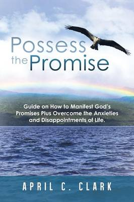 Possess the Promise: Guide on How to Manifest God's Promises Plus Overcome the Anxieties and Disappointments of Life. (Paperback)