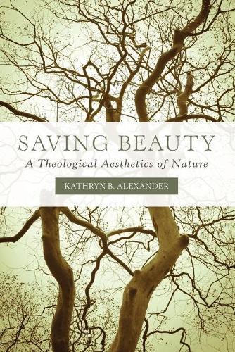 Saving Beauty: A Theological Aesthetics of Nature (Paperback)