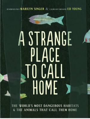 A Strange Place to Call Home (Hardback)