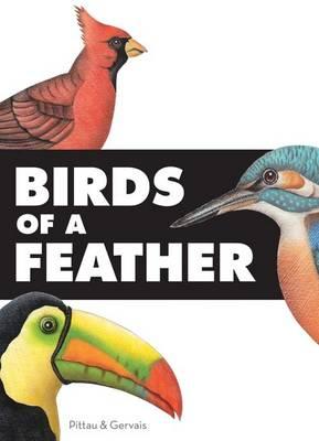 Birds of a Feather (Hardback)