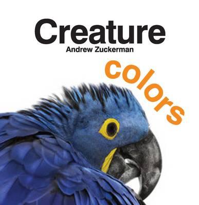 Creature Colors (Board book)
